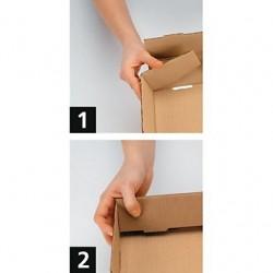 Coiffe palette carton