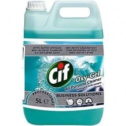 CIF Professionnel Oxy gel - Tiggre.fr